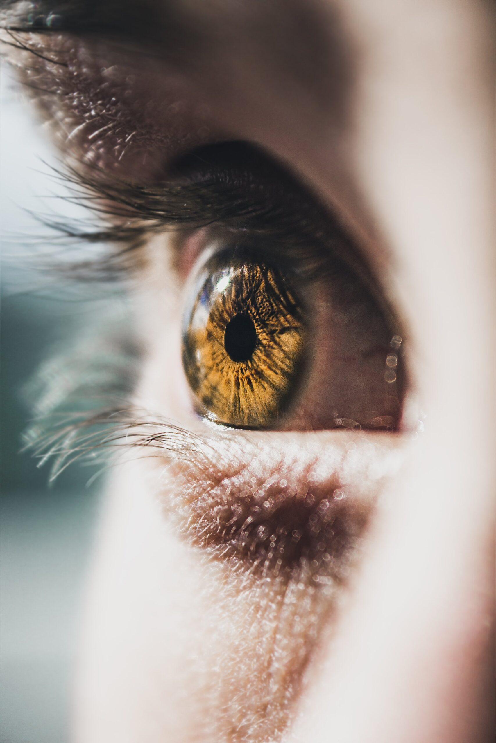 Augengesundheit: Scharf sehen bis ins Alter